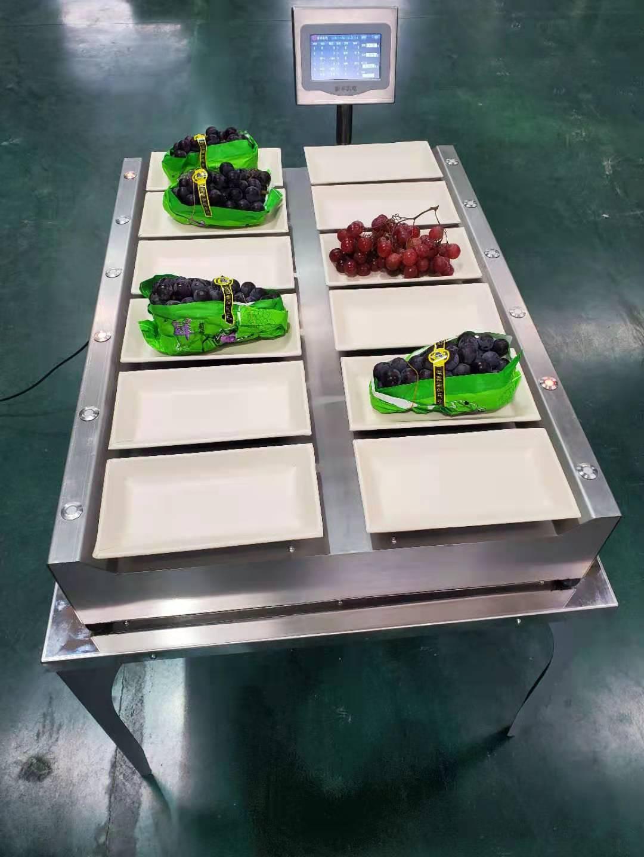 果蔬装箱电脑配重机(XFWEA-09)