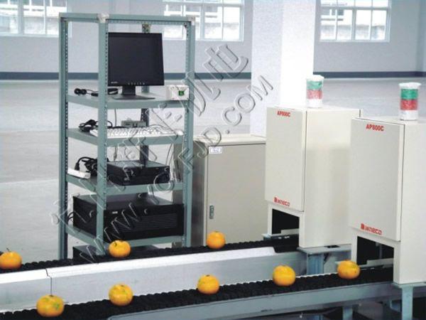 恒新牌XFPEA-06型光电式果蔬分选机